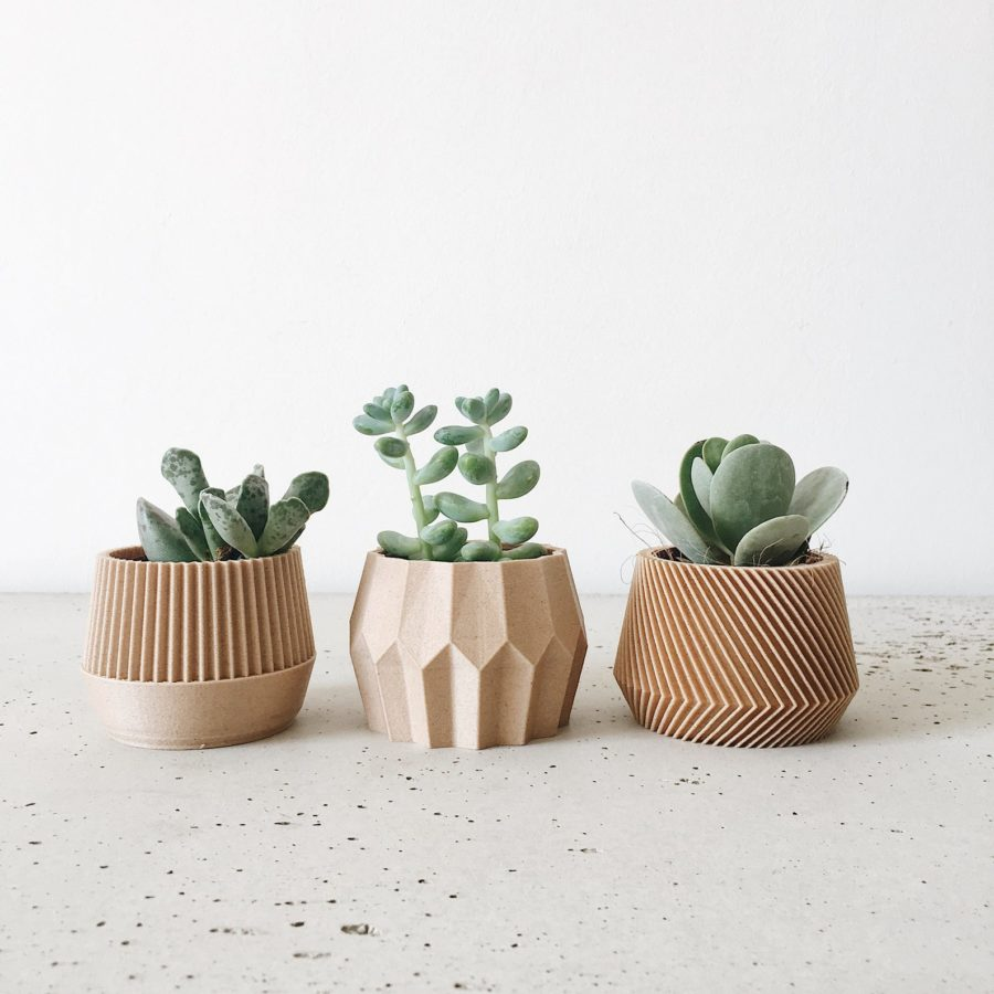 Set-small-succulent-plant-pot-gift
